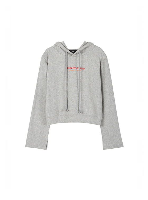 Cropped Hoodie Sweatshirt in Grey_VW8AE0620